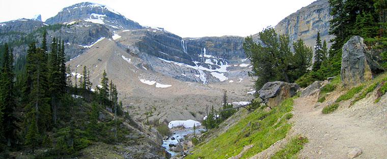 trail to Bow Glacier Falls