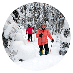 two snowshoers among snow covered trees